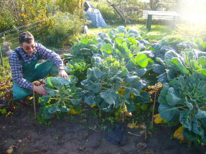"""Picture of exhausted looking home gardener. NOTE: This picture is okay for me to use, as I found it within the """"Clipart"""" collection of my Microsoft Office suite, but do not consider it openly licensed, as the rest of my article is, because I have no rights to transfer the copyright."""